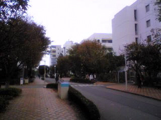 東邦大学習志野キャンパス